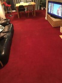 large red carpet 3.5 x 7.5m