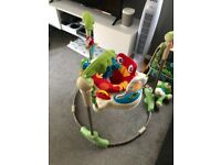 Fisher price frog jumperoo