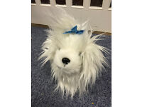 White Soft Fluffy Small Dog With Blue Bow On New