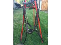 Good quality bridle