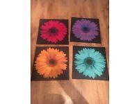 Flower canvas x4