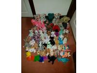 TY Beanie Baby and Buddy Collection