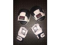 Mma Gloves size large and Focus Pads Mitts.