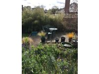 Comfortable room in cottage in Abbotskerswell, garden, parking, village shop, bus routes £100PW
