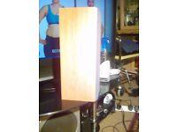 Gale moviestar speaker nice looking bargain to snap at