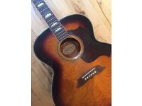 Acoustic Ozark Guitar 3394 With Hard Case