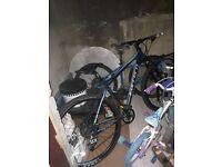 carrera hellcat bike