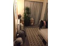 One bed studio flat Furnished available from 30-04-2017