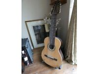 Classical Guitar - 10 String