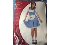 Large adults country girl/Dorothy wizard of oz costume