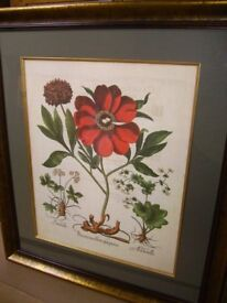 Picture - Large stunning top quality picture a real quality item - was very expensive