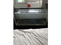Large glass rodent tank