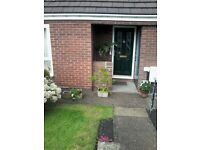 2 bedroom bungalow for 2 bedroom bungalow or house birtley/chester le street/low fell areas