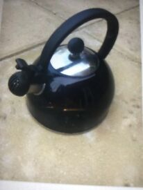 Caravan or camping whistling kettle.