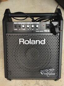 Roland PM10 drum amplifier speaker
