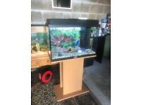72l Juwel fish tank v g c and full set up with stand light heater filter lid gravel nice ornament