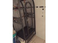 Parrot big Cage with parrot toys for sale cheap