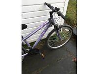 Ladies apollo hybrid bike