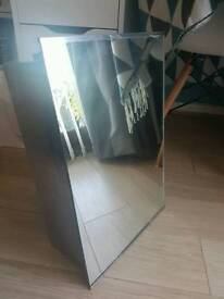 Mirrored bathroom/medicine cabinet