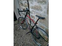 Specialized Secteur Bicycle - 58cm Frame