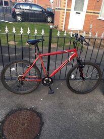 Men's hybrid bycicle