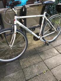Bike Ridgeback hybrid