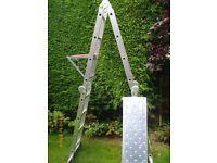 BPS multi purpose ladder