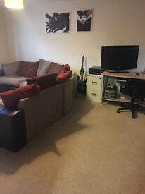 Single room available in modern flat
