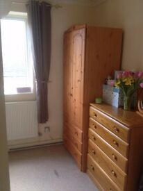 NICE MEDIUM SIZE ROOM IN A BEAUTIFUL DOUBLE BEDROOM FLAT