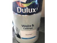Dulux paint - Rock Salt