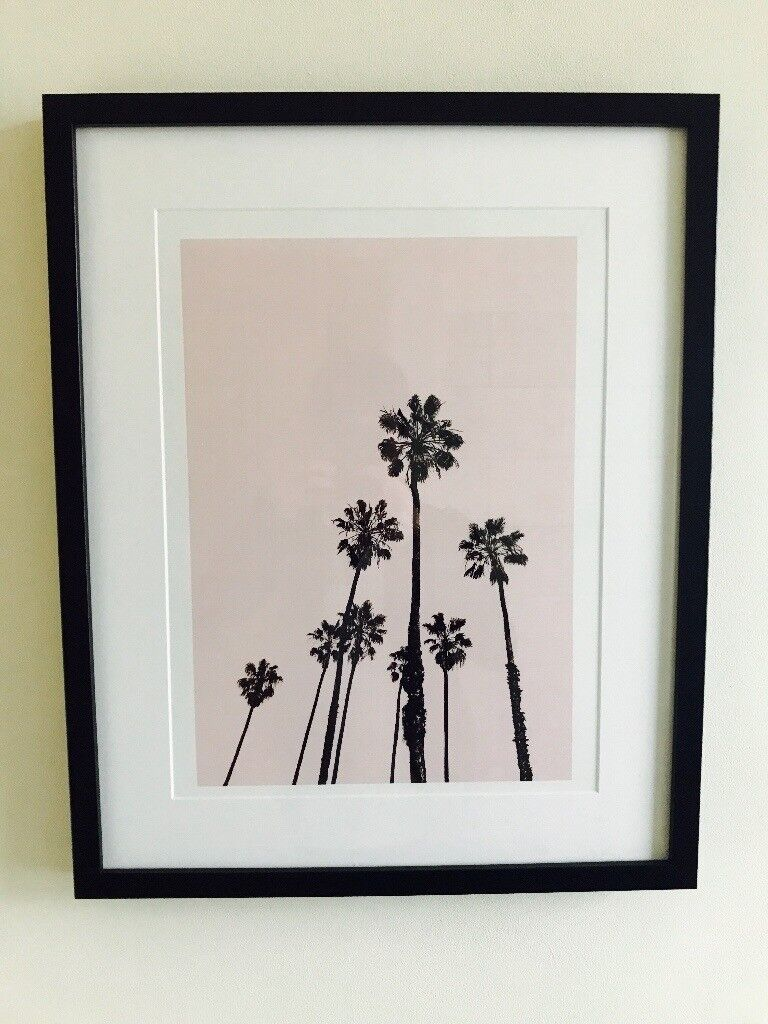 PalmTree picture in Black Frame