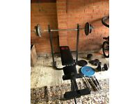 Pro Power Bench Press, Weights, Bar and Dumbell Bar