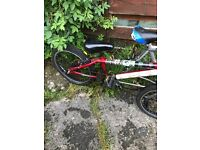 Apollo BMX and Trek Mountain Bike
