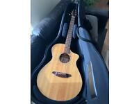 Breedlove AC/25 Acoustic Guitar Stunning