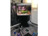 90 litre fish tank aquarium - Full set up + Extras