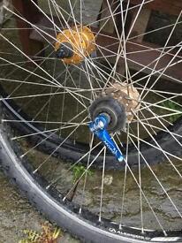 Alexrims wheels