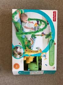 Fisher Price Jungle Gym