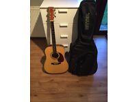 Ridgewood SW209N Guitar