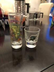 2 Florida Shot glasses