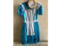 Alice in Wonderland costume age 11-12 years