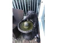 Large dog water fountain