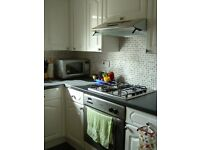 Home away from home - lovely two bedroom flat in Sciennes