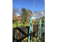Garden bundle 3