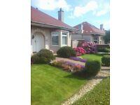 Pro Mow Garden Services, garden, gardening, gardener,