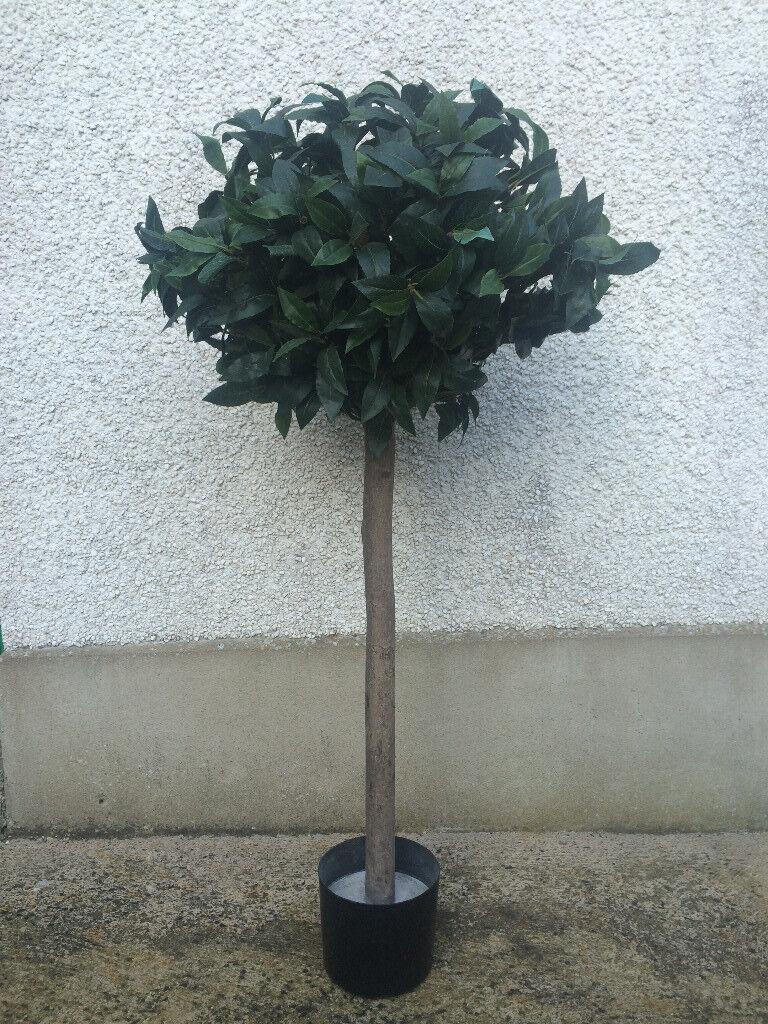 Artificial Bay Tree With Real Wooden Trunk