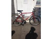 Trek mountain bike red