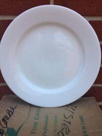 Australian Fine China Hotel Grade Porcelain Flinders Dinner Plates 31cm 2boxs 12