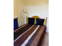 Beautiful Single room available ASAP in Neasden; vegetarian / vegan preferred, ALL BILLS INCLUDED! !