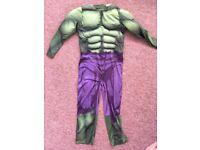 Kids fancy dress hulk costume