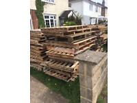 Free wooden pallets 40+